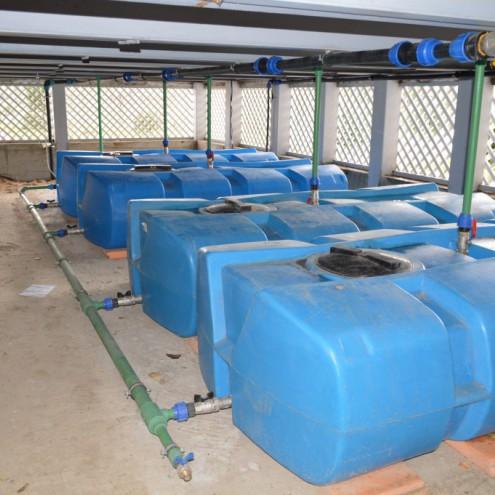 Резервуары для полива